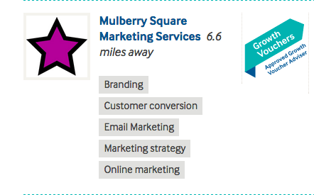 Mulberry Square Growth Voucher Advisers